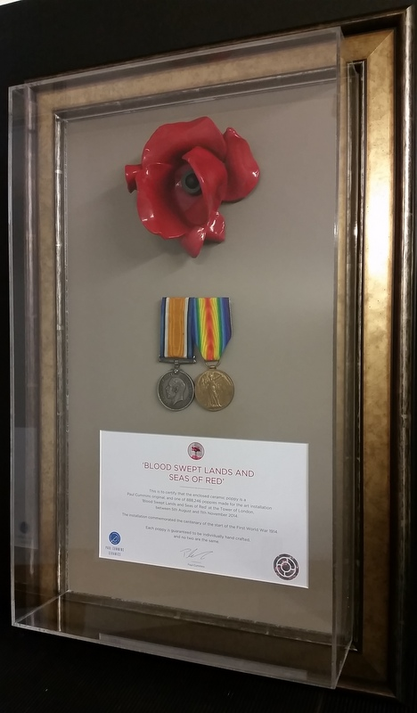 Tower of London Poppy head, with certificate & medals